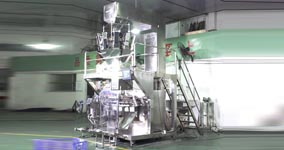 HC-250智能高速全自动包装机